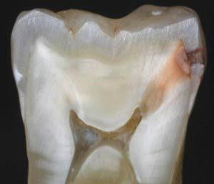 cabinet stomatologic preturi